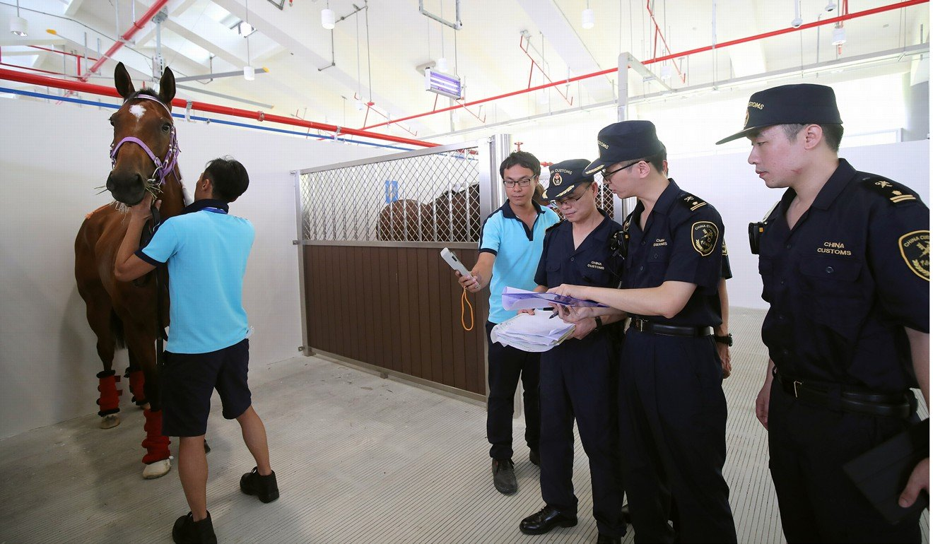 Chinese customs officials check the paperwork of a horse arriving at Conghua.