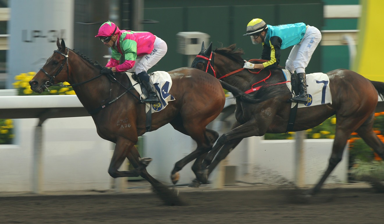 Elusive State wins at Sha Tin in January.