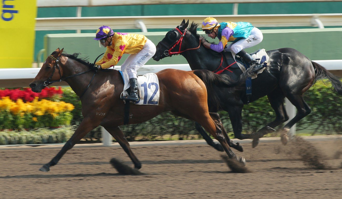 Star Superior hits the line to win at Sha Tin on Sunday.