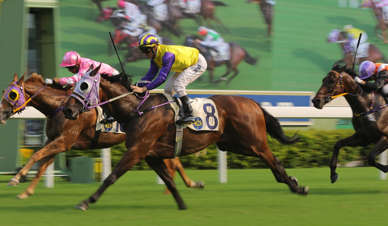 Invincible Missile salutes at Sha Tin in his first-up run this season.