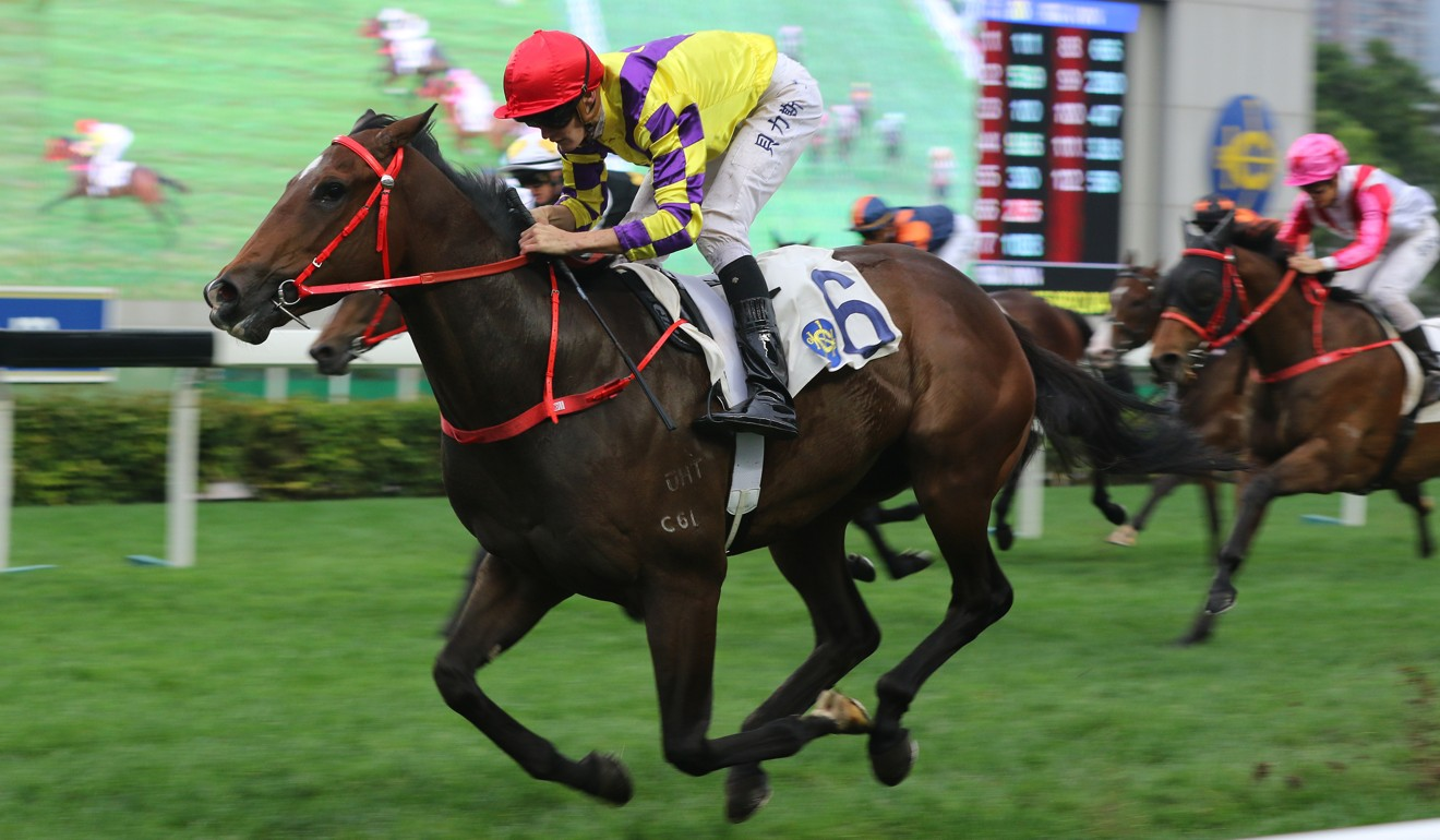 Champion's Way coasts to victory at Sha Tin in March.