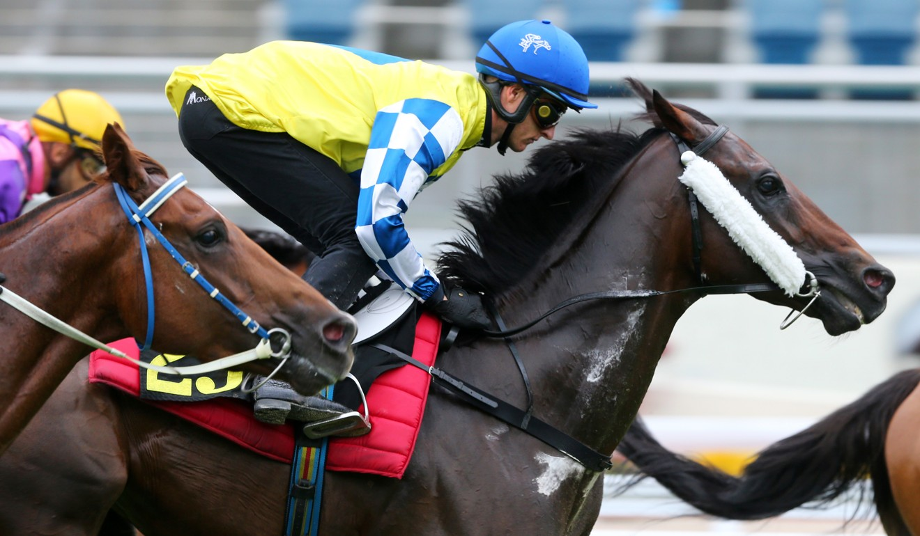 Zac Purton partners Chefano in a recent trial.