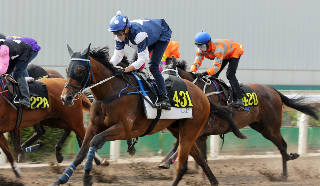 The Hulk trials on the all-weather surface at Sha Tin.