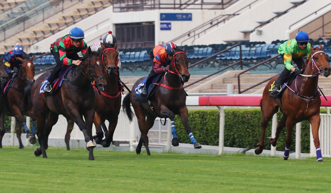 General's Delight works into the clear during a barrier trial at Sha Tin.
