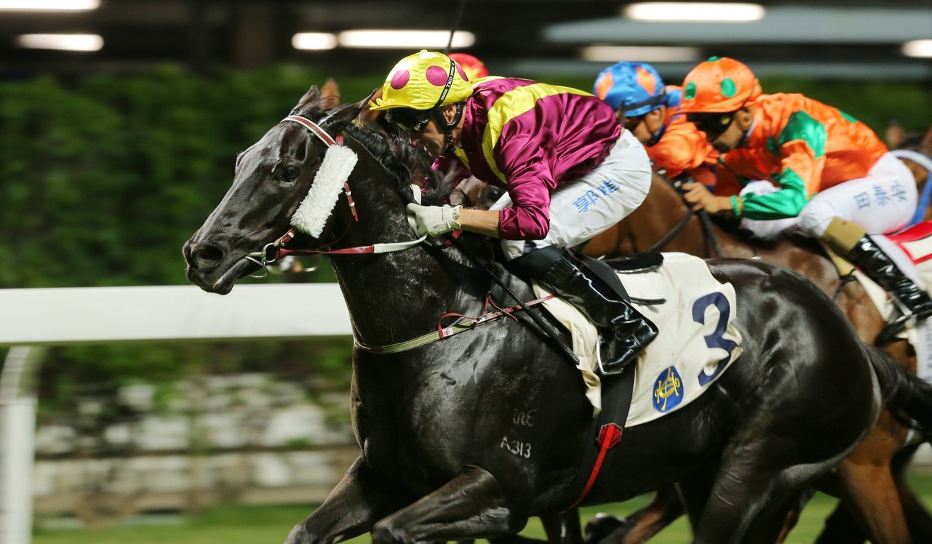 Neil Callan rides Happy Warrior to victory at Happy Valley.