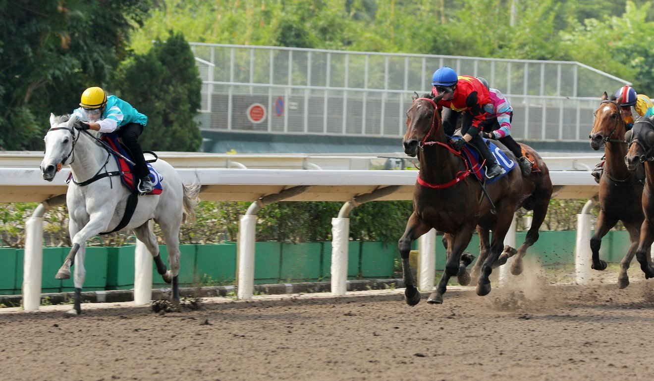 The Weatherman kicks clear during a barrier trial at Sha Tin.