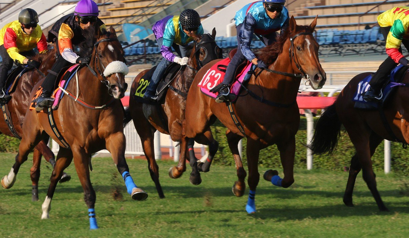Premiere (left) storms home to win a recent trial.