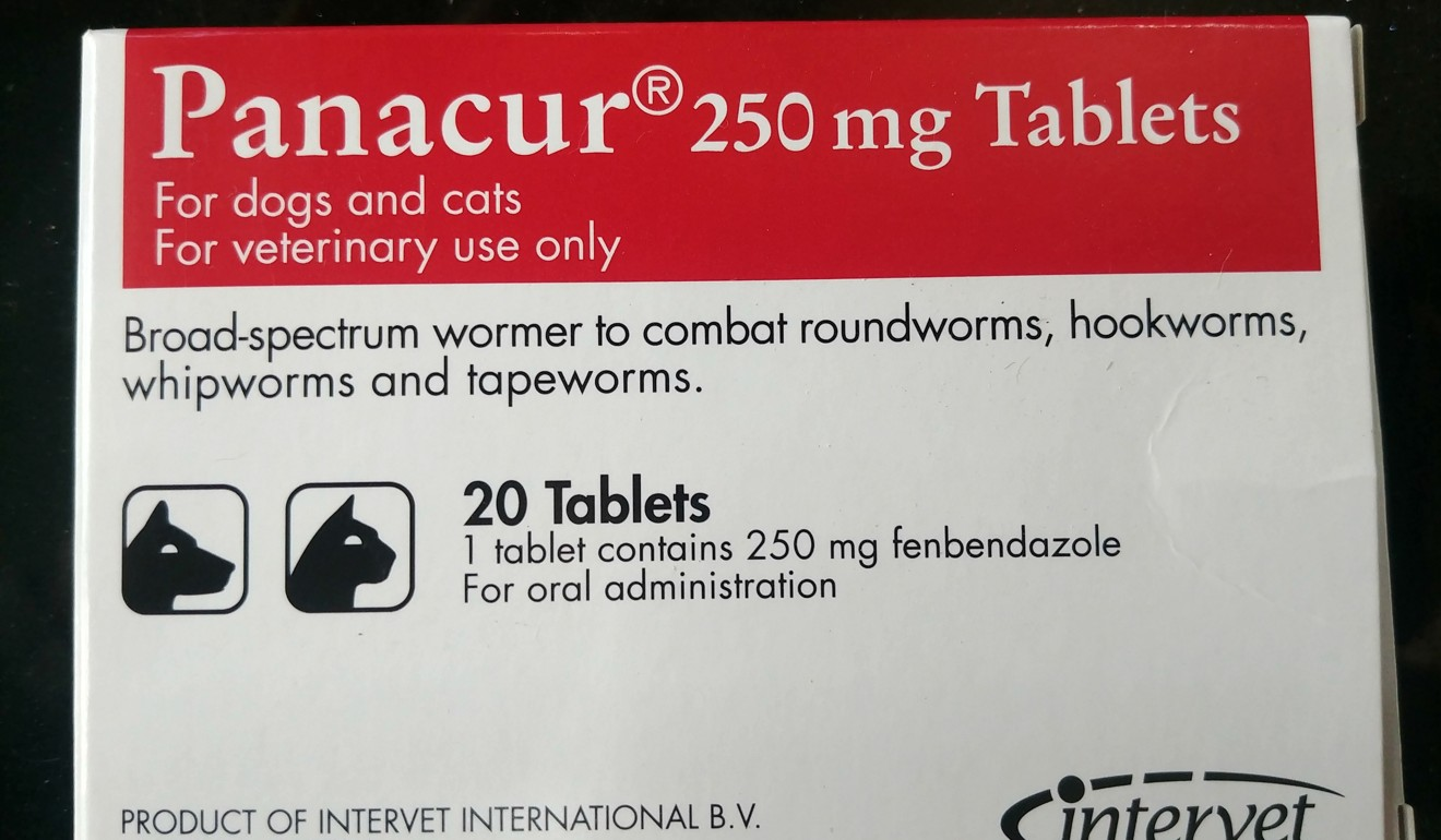 Fenbendazole is a parasite-killing drug for dogs and cats. Photo: Park Chan-kyong