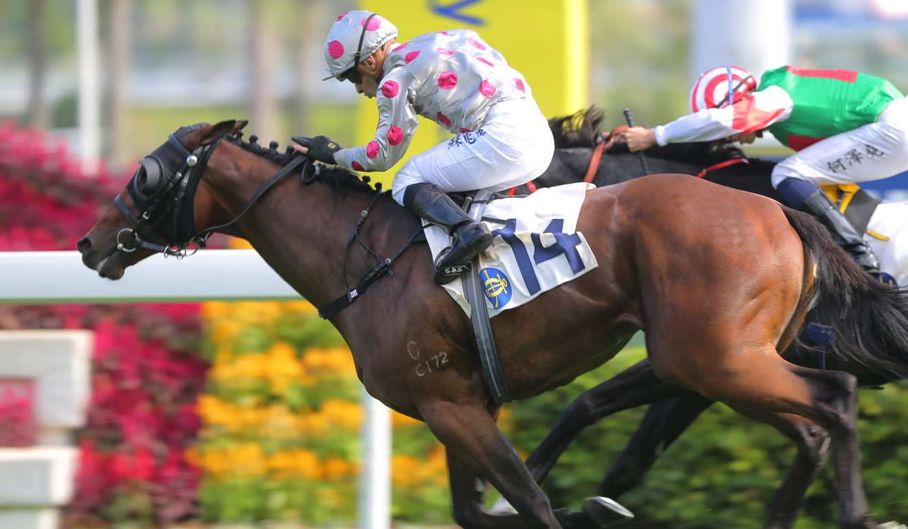 Silvestre de Sousa boots home a winner at Sha Tin on Sunday.