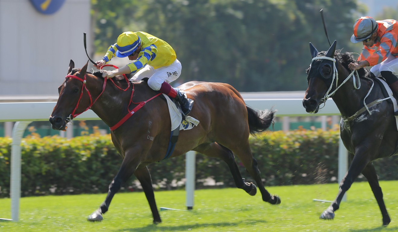 Blake Shinn boots Fantasy home for Danny Shum at Sha Tin.