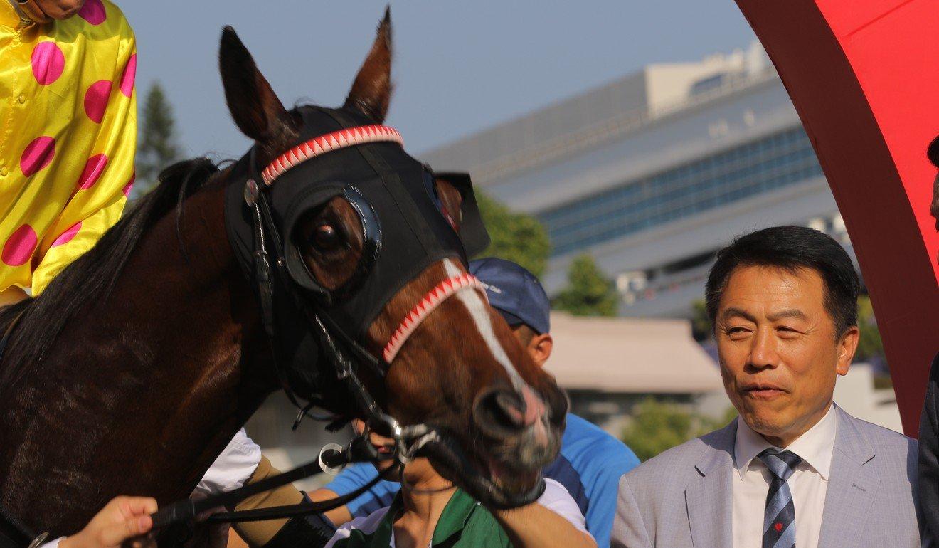 Yiu looks over Simple Elegant after winning at Sha Tin.