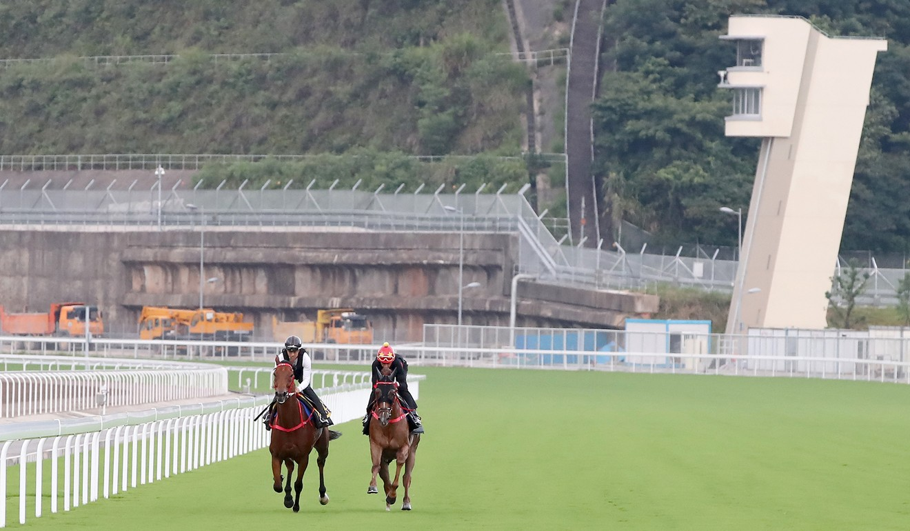 Horses gallop on the Conghua racecourse.