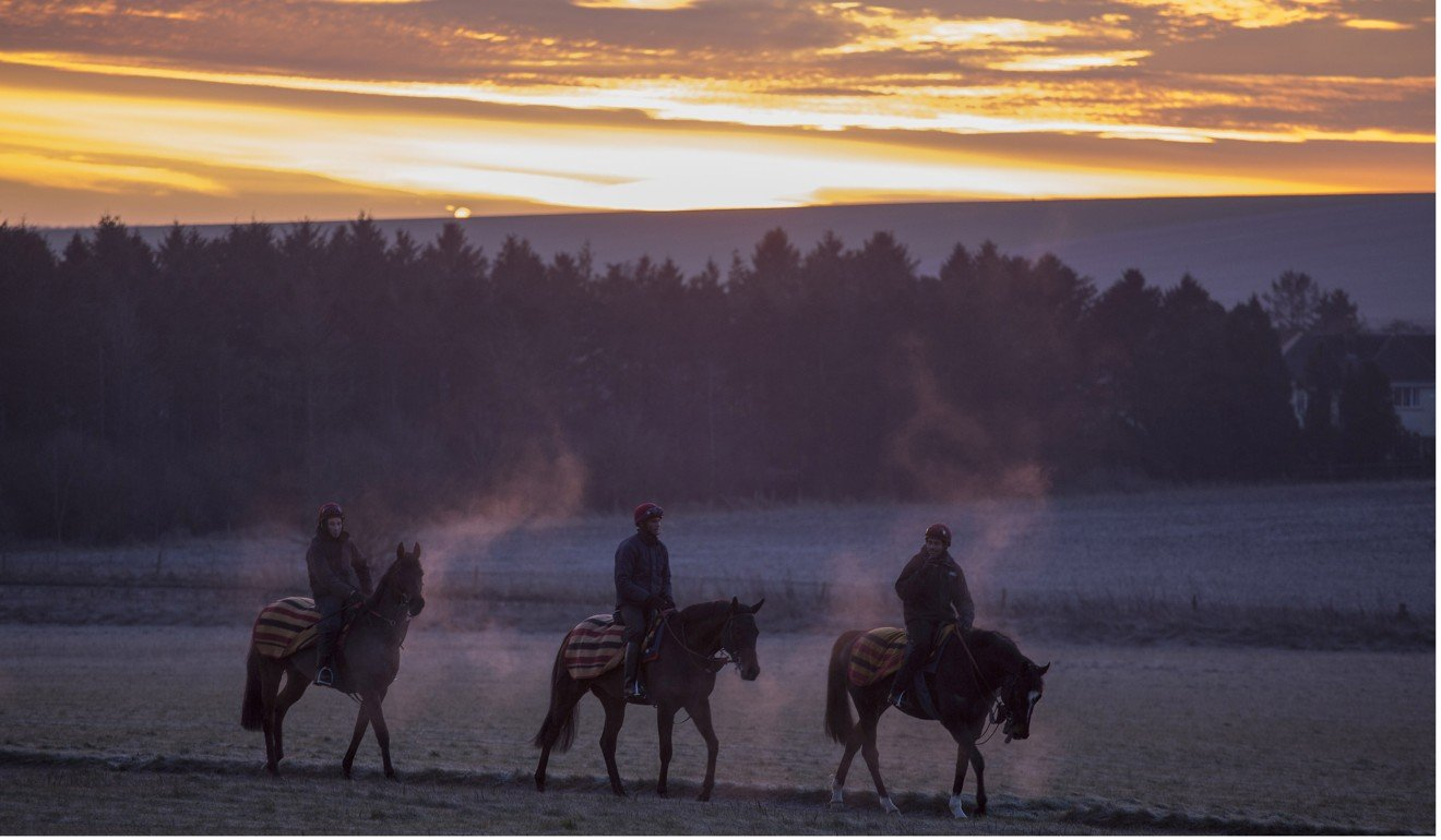 Racehorses trained by Roger Charlton head out in the frost of Beckhampton for early morning exercise at the end of one of the coldest nights of the year. Photo: Racingfotos.com