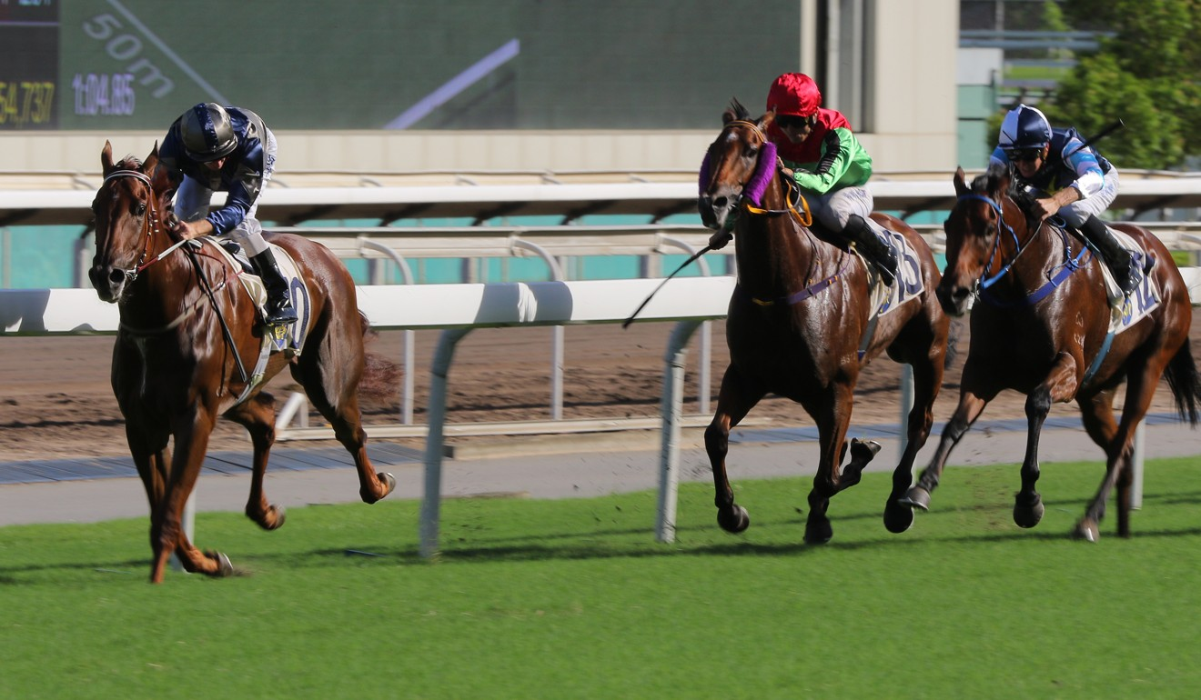 Aethero smashes his rivals at Sha Tin.