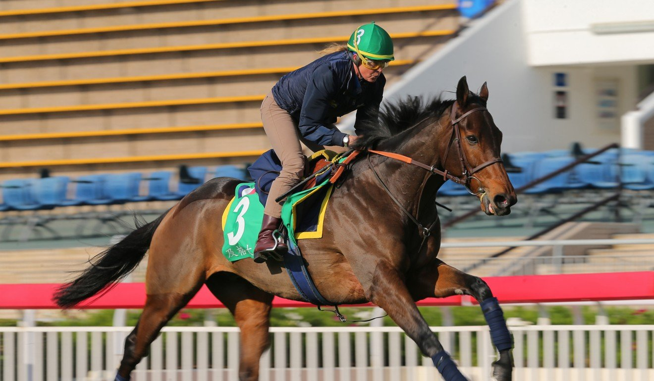 Pia Brandt works Called To The Bar at Sha Tin on Tuesday morning.