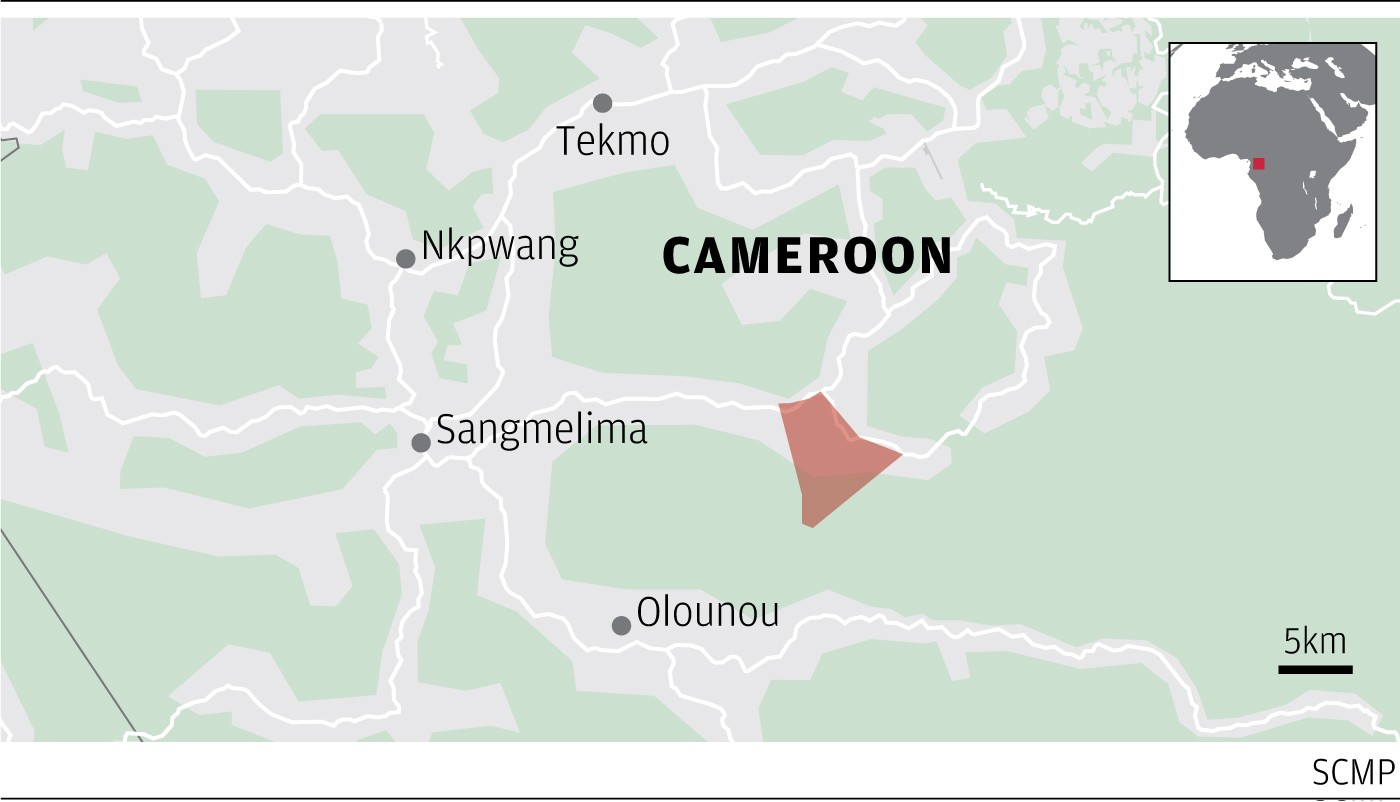 Leak reveals Hong Kong firm's failed multimillion-dollar cannabis plan for Cameroon