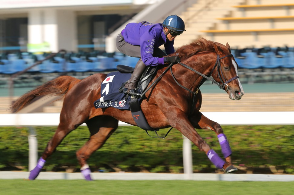 Admire Mars works at Sha Tin this week.