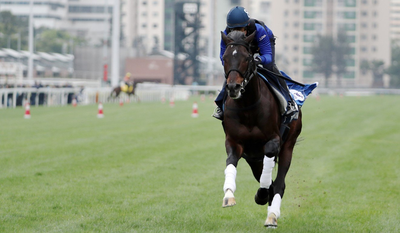 Persian Knight thunders down the Sha Tin straight on Thursday.
