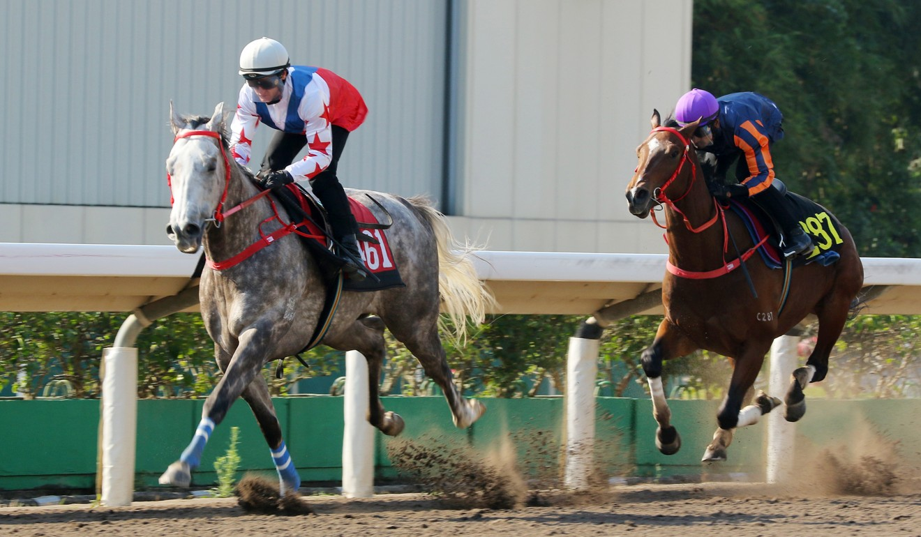 Big Party wins a trial at Sha Tin last month.