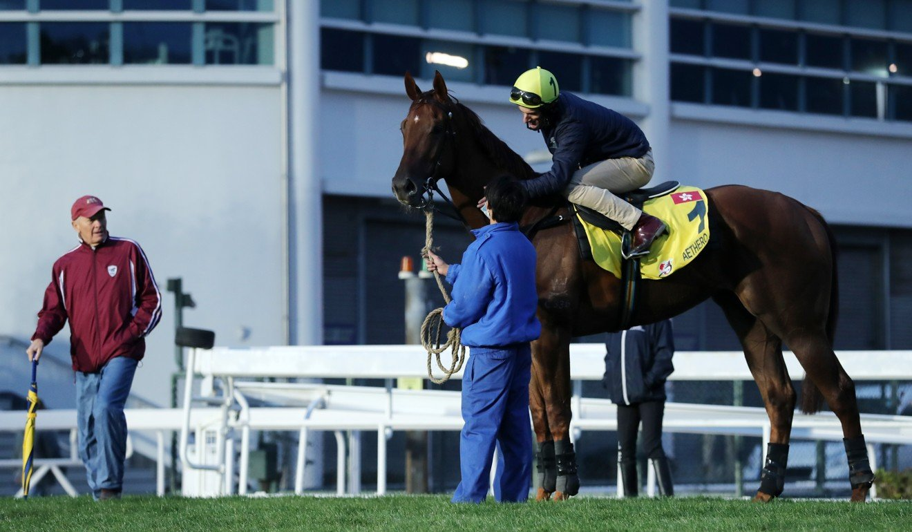 John Moore looks over Aethero at Sha Tin.