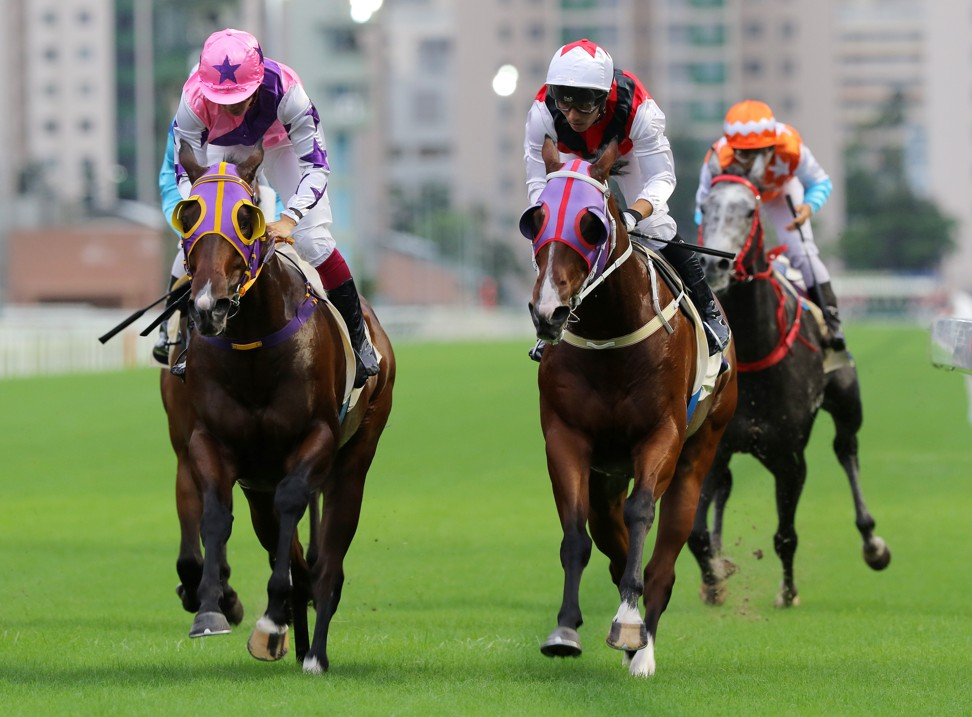 Multimillion (right) surges to victory at Sha Tin earlier this season.