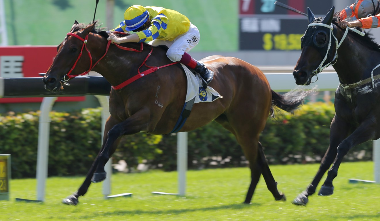 Fantasy races away to win at Sha Tin last month.