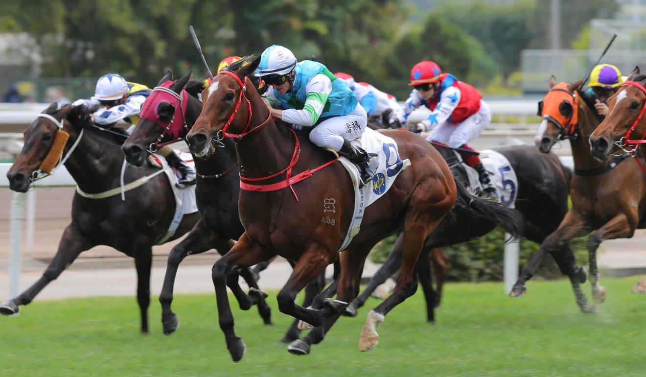 Sam's Love strides out to win at Sha Tin on Saturday.