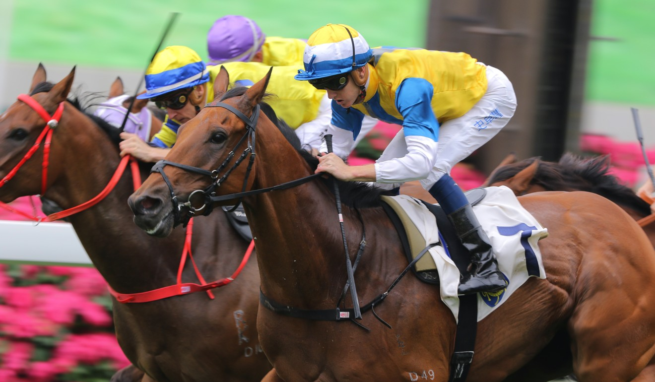 Xponential runs over the top of his rivals under Chad Schofield at Sha Tin on Saturday.