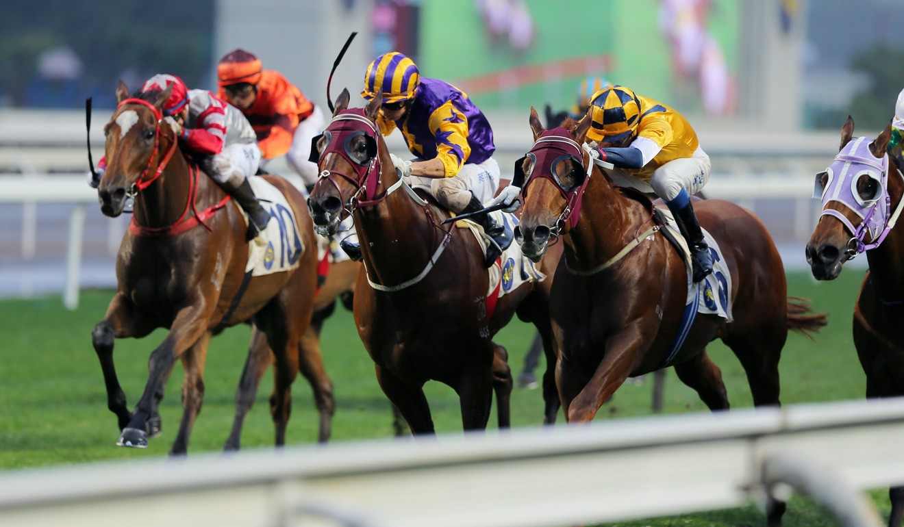 Styling City (outside) sneaks past his rivals to win at Sha Tin last season.