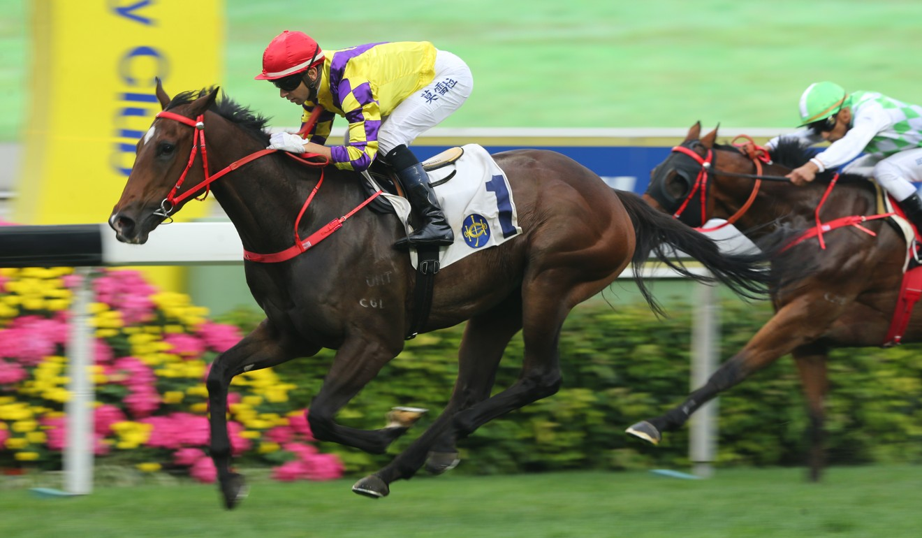 Champion's Way salutes under Joao Moreira in March.