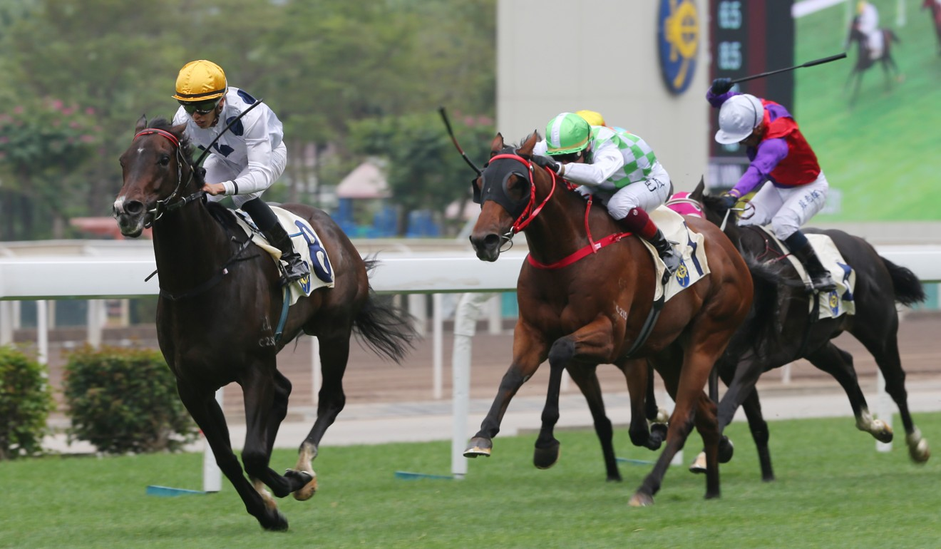 Golden Sixty dashes clear at Sha Tin on Wednesday.