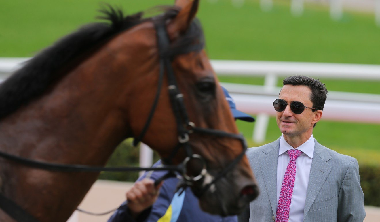Trainer Douglas Whyte looks over his debut winner Xponential last month.