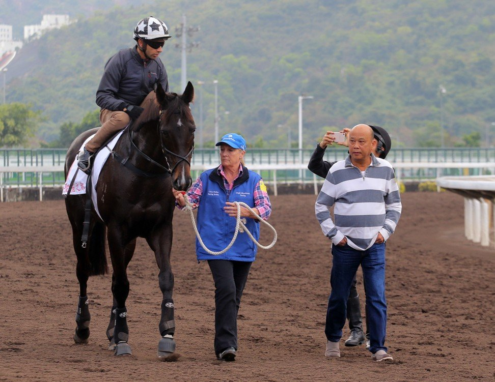 Trainer Joe Lau (right) walks back with Sacred Capital after the horse galloped under Joao Moreira on Sunday.