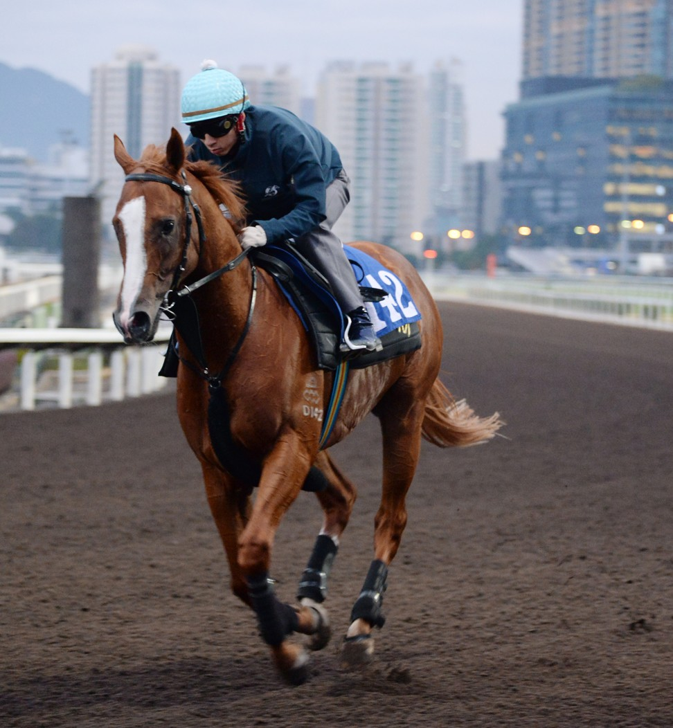 Stronger gallops at Sha Tin recently.