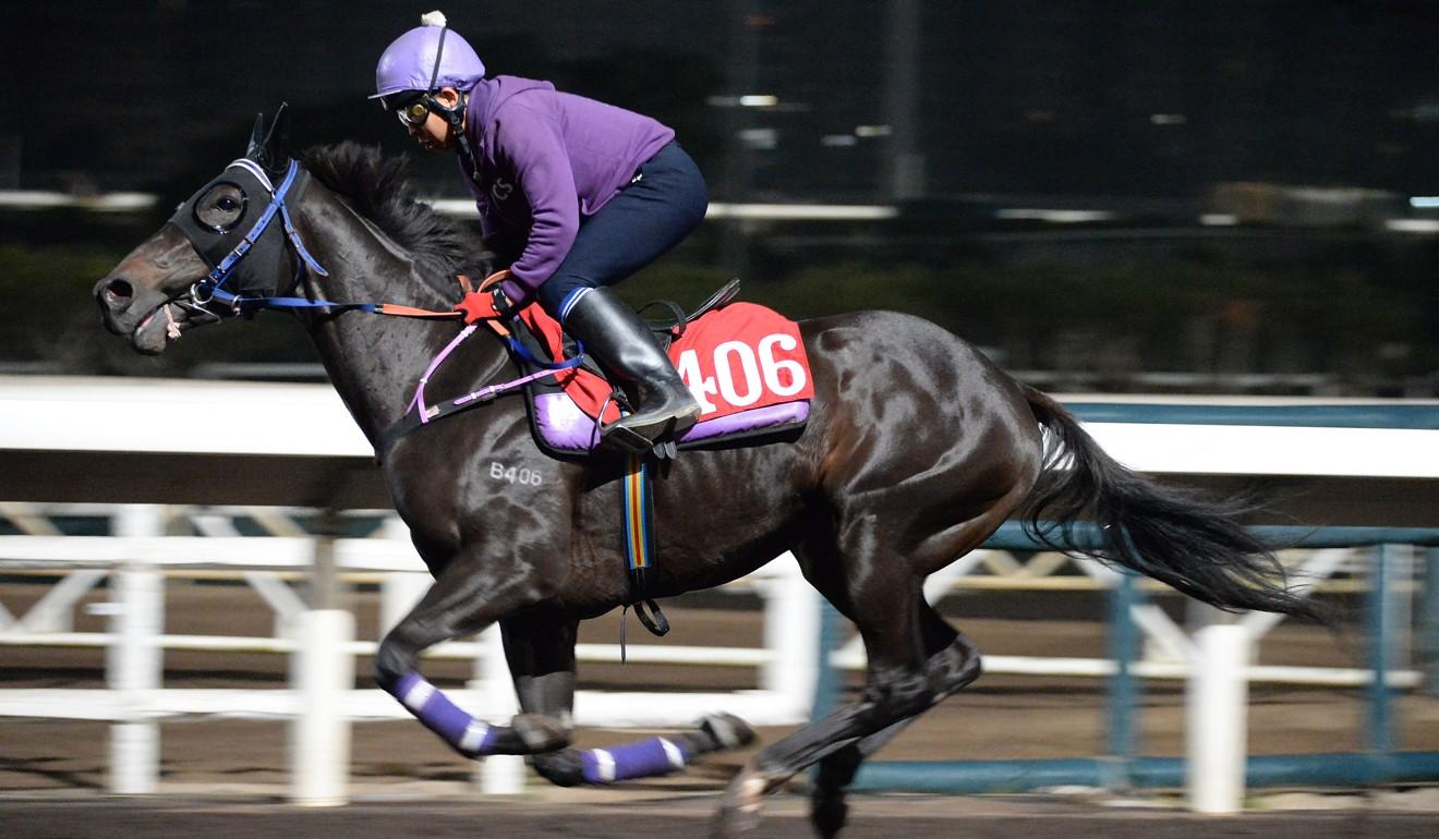 Zhan Jiang Rocks gallops at Sha Tin recently.