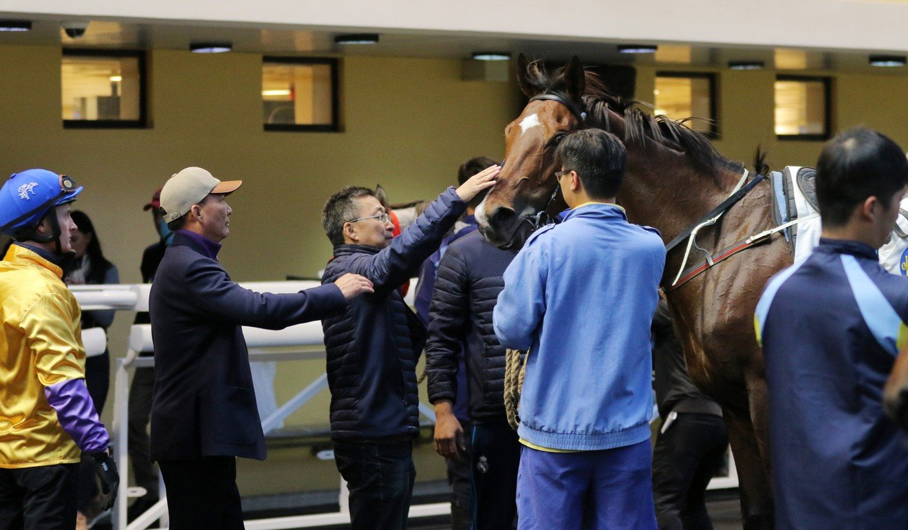 Trainer Francis Lui looks over More Than This with owner Huang Kai-wen at Happy Valley.