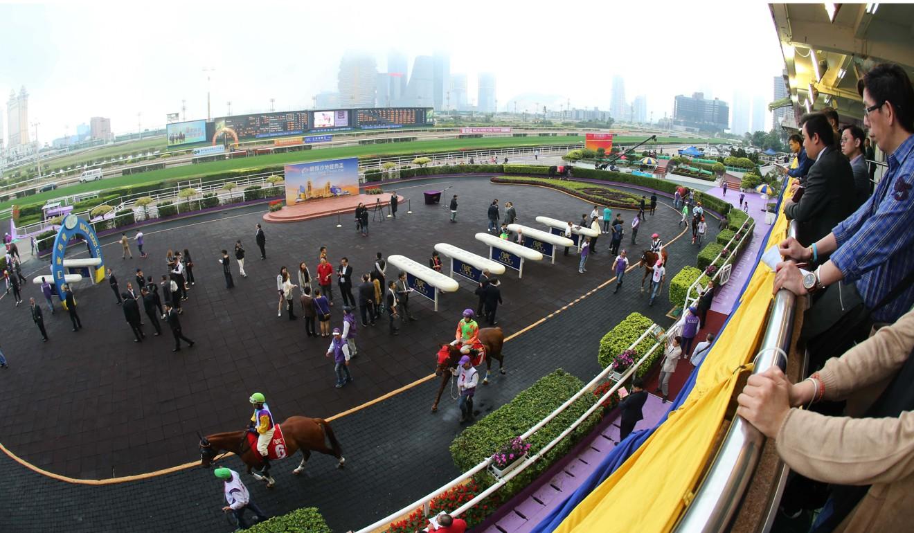 Punters look on at Macau racecourse.
