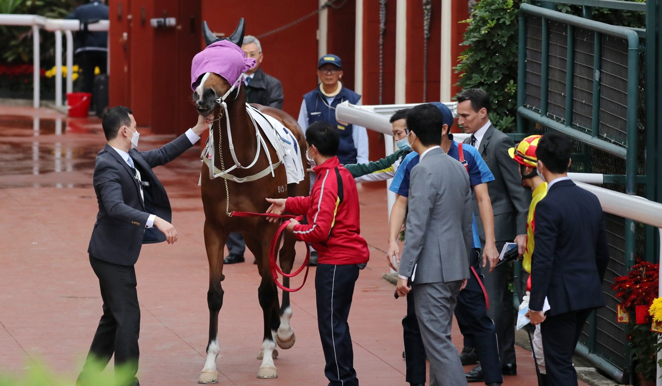 Handlers attempt to get Savvy Six onto the track at Sha Tin on Sunday.
