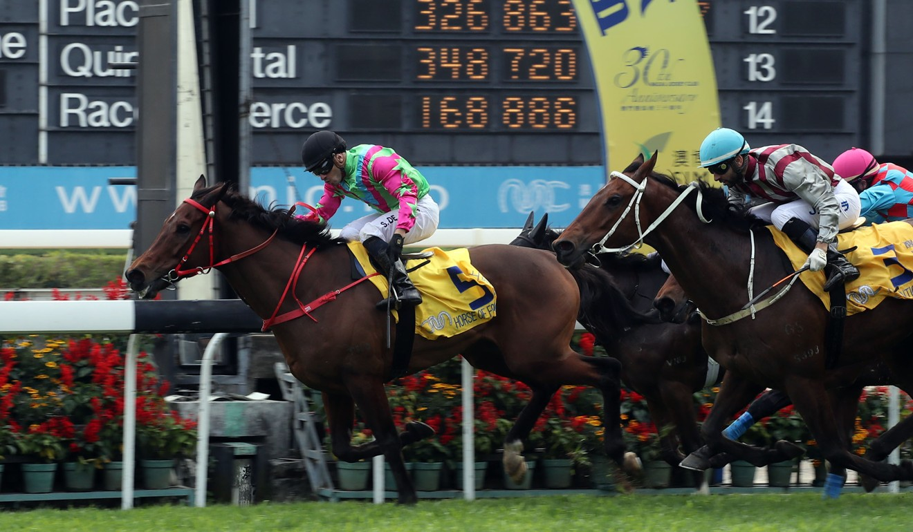 Horse Of Fortune wins last year's Macau Hong Kong Trophy. Photo: HKJC