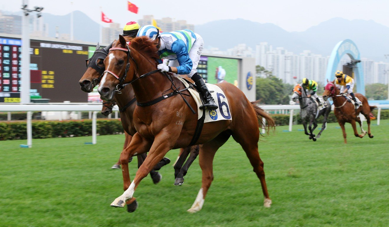 Voyage Warrior wins at Sha Tin on New Year's Day.