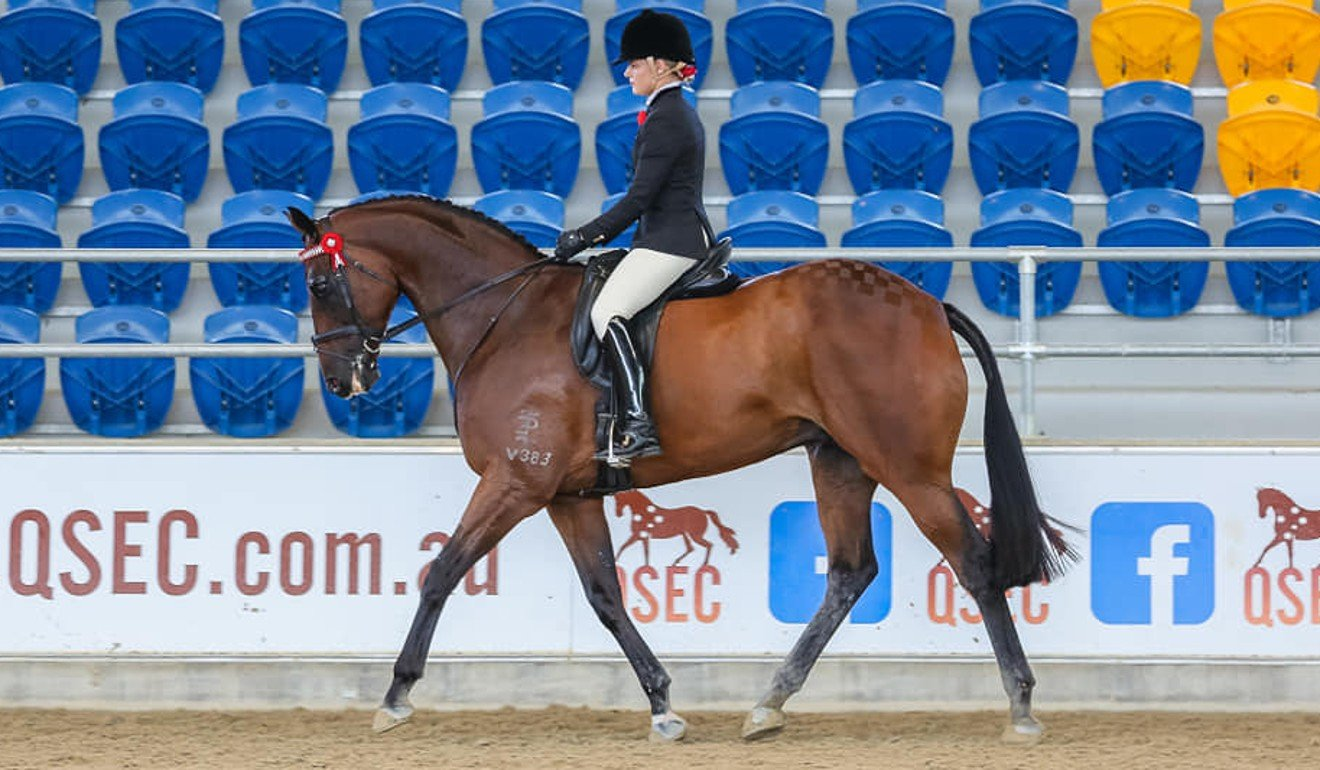 Amy Taylor rides Elegant Tapestry. Photo: ITR