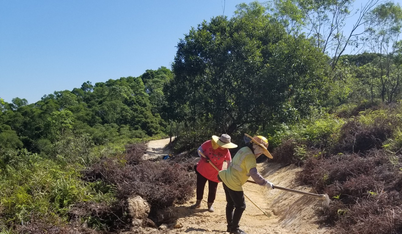 'Development is for north (Lantau), conservation for the south', says the CEDD. Photo: Handout