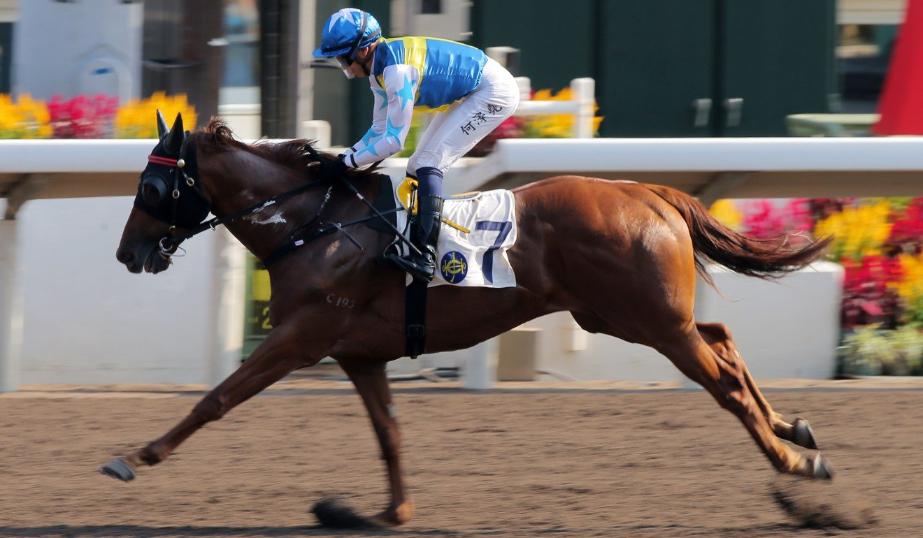 Elite Patch romps to victory at Sha Tin in November.