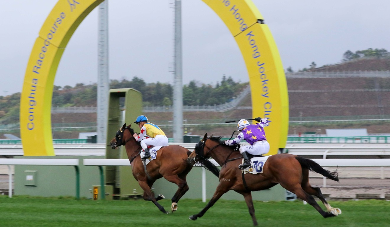 Hong Kong Jockey Club confirms it will resume racing in the mainland this year