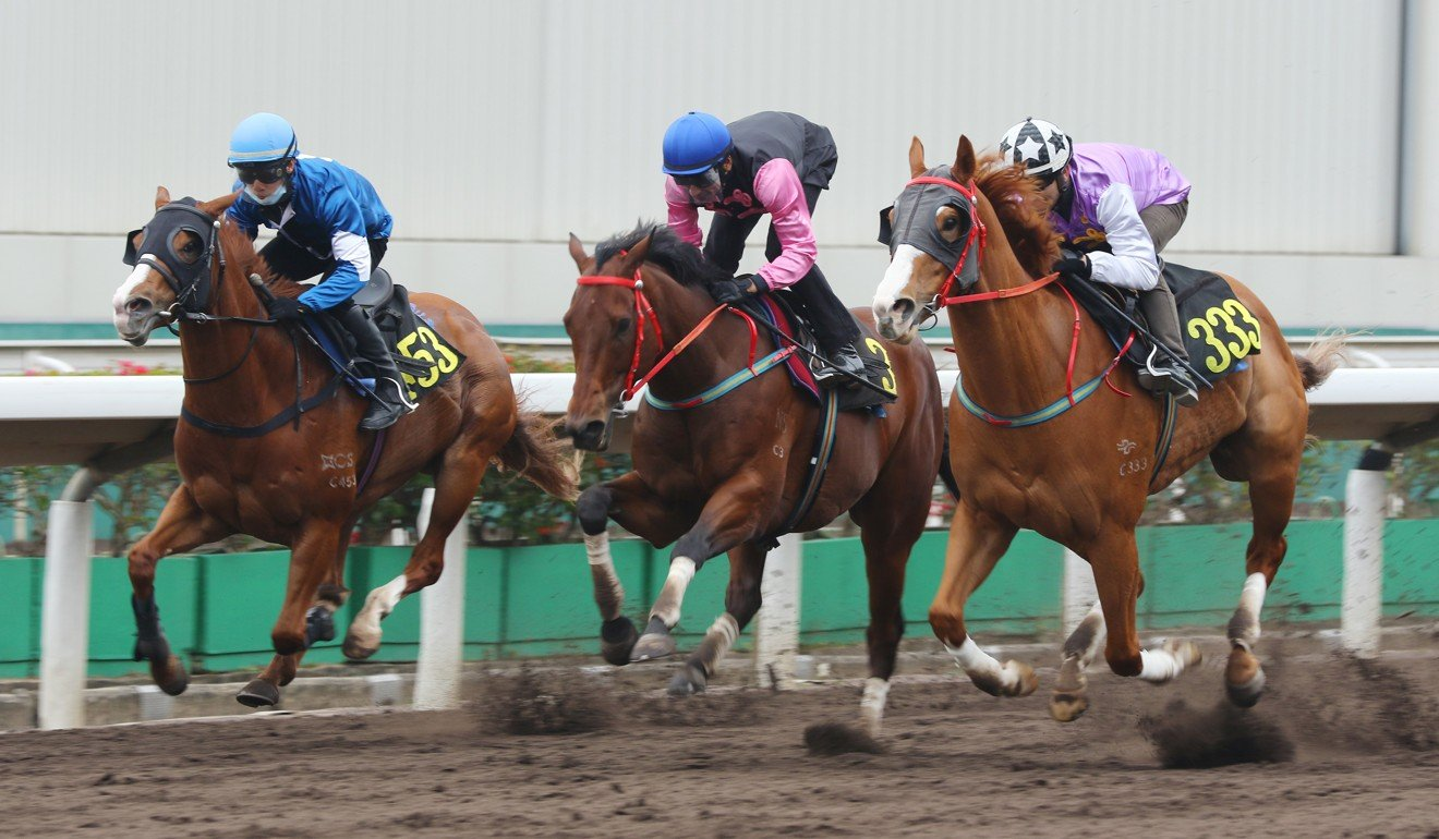 Full Of Beauty (middle) trials at Sha Tin recently.
