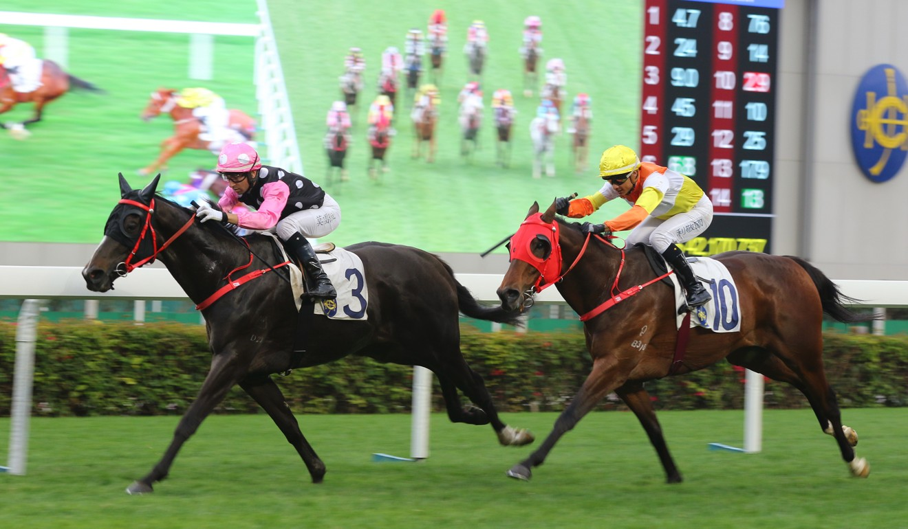 Beauty Legacy races clear to win on debut in January.