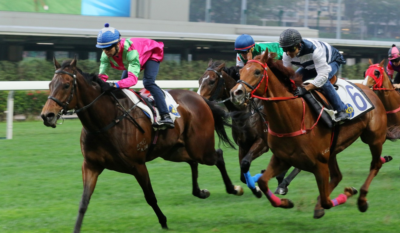 Joao Moreira rides Elusive State in a barrier trial at Happy Valley on Saturday morning.