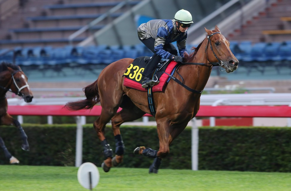 Aethero wins a trial under Zac Purton at Sha Tin on Tuesday morning.