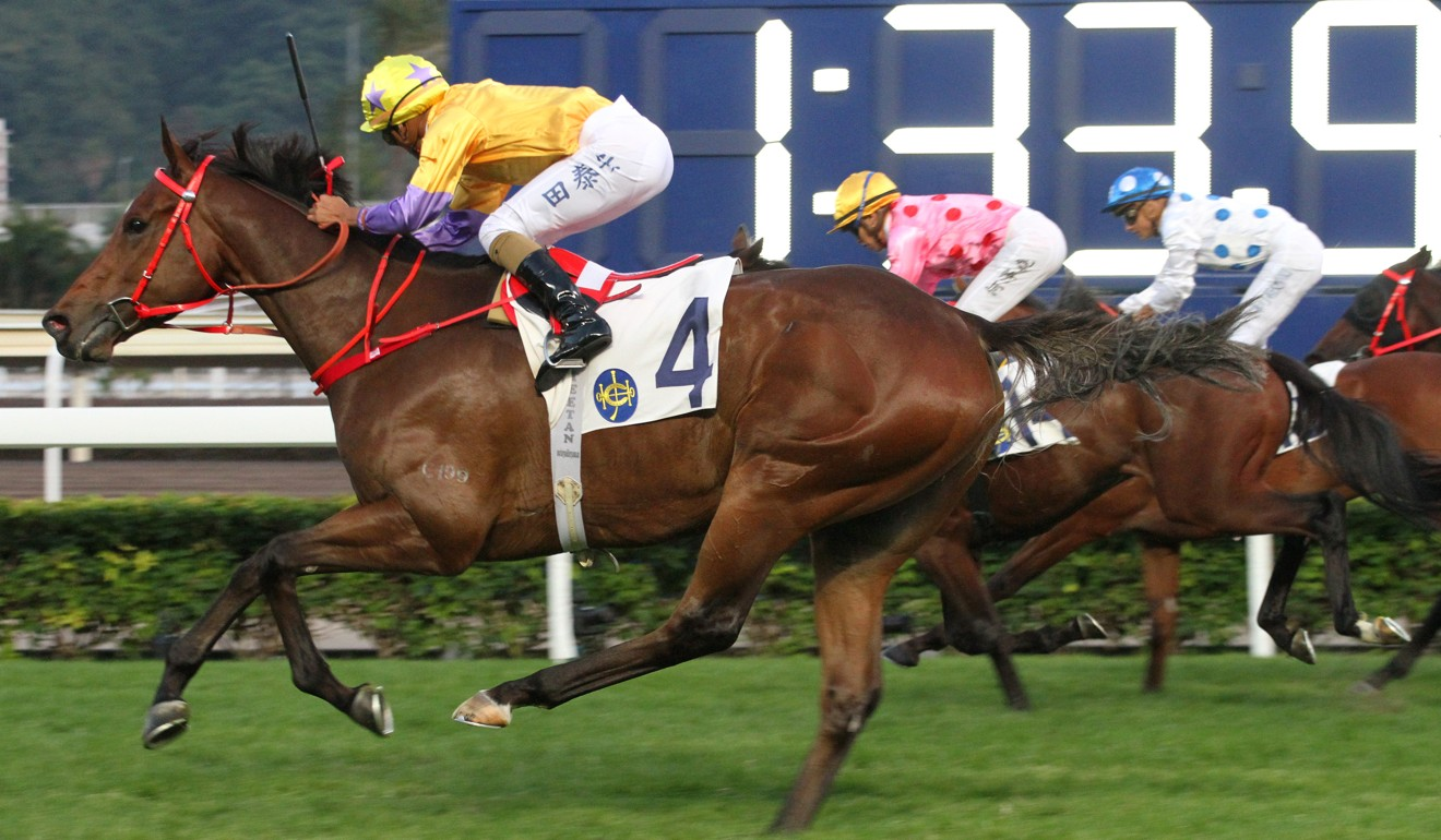 More Than This wins at Sha Tin in December.