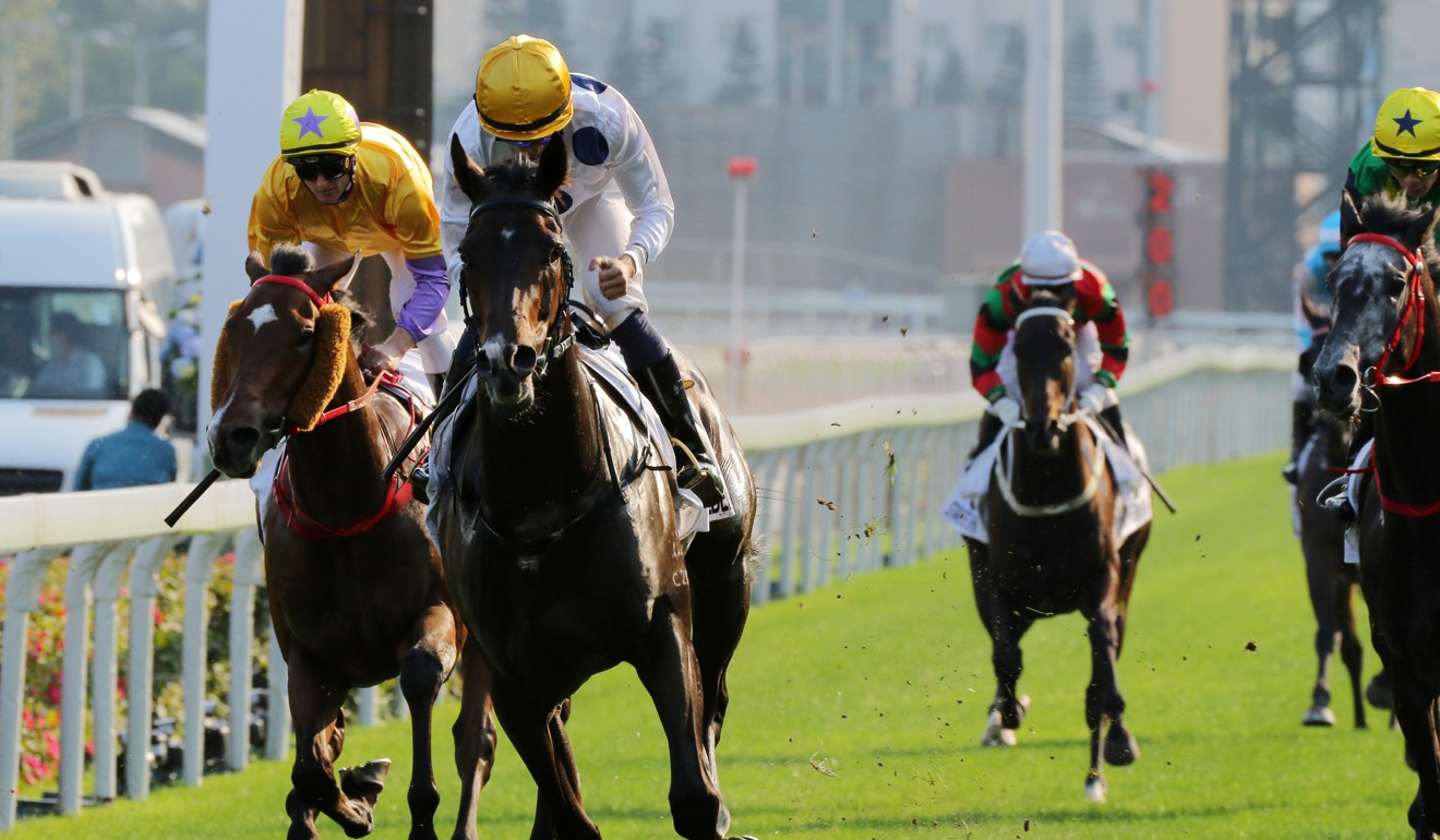 Golden Sixty crosses the line in the Hong Kong Derby.